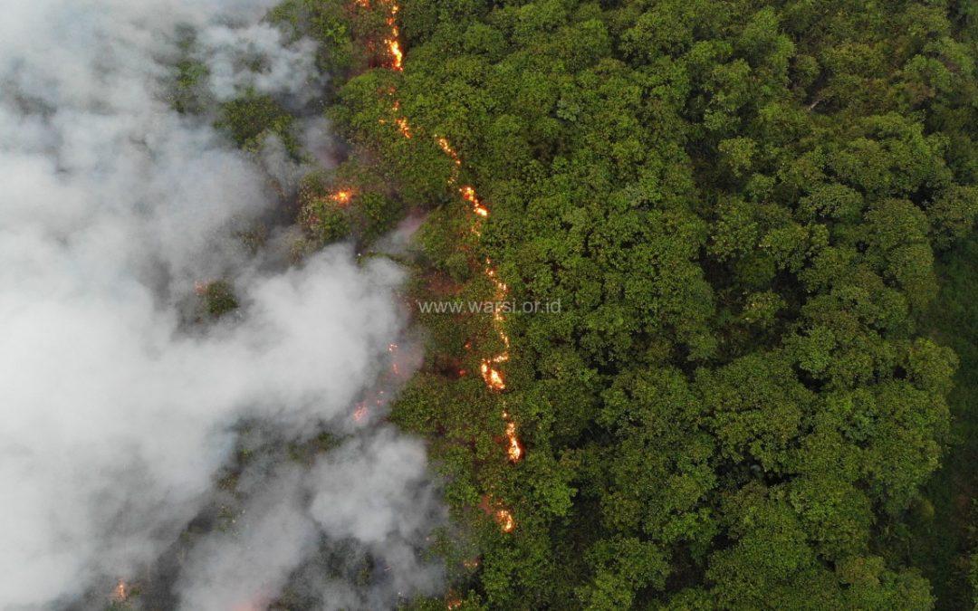 Kebakaran Hutan dan Lahan Makin Meluas