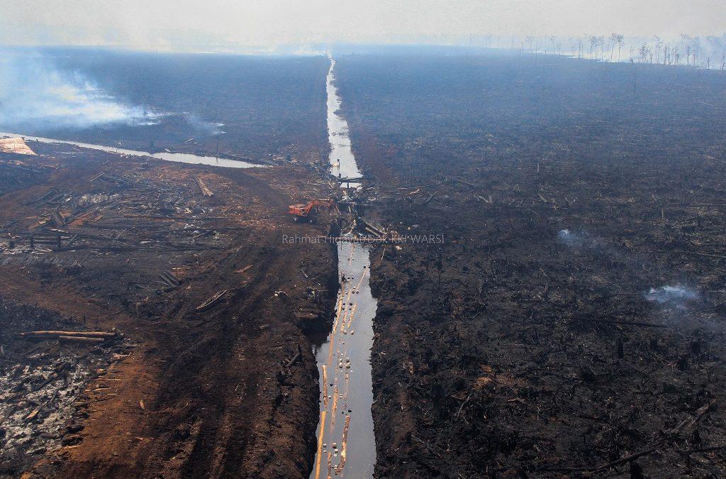 Kerusakan Ekosistem, Jambi Rugi Lebih Rp 17 T