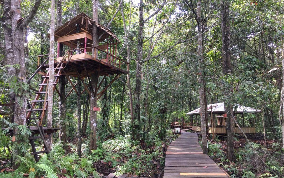 Hutan Desa Pematang Rahim