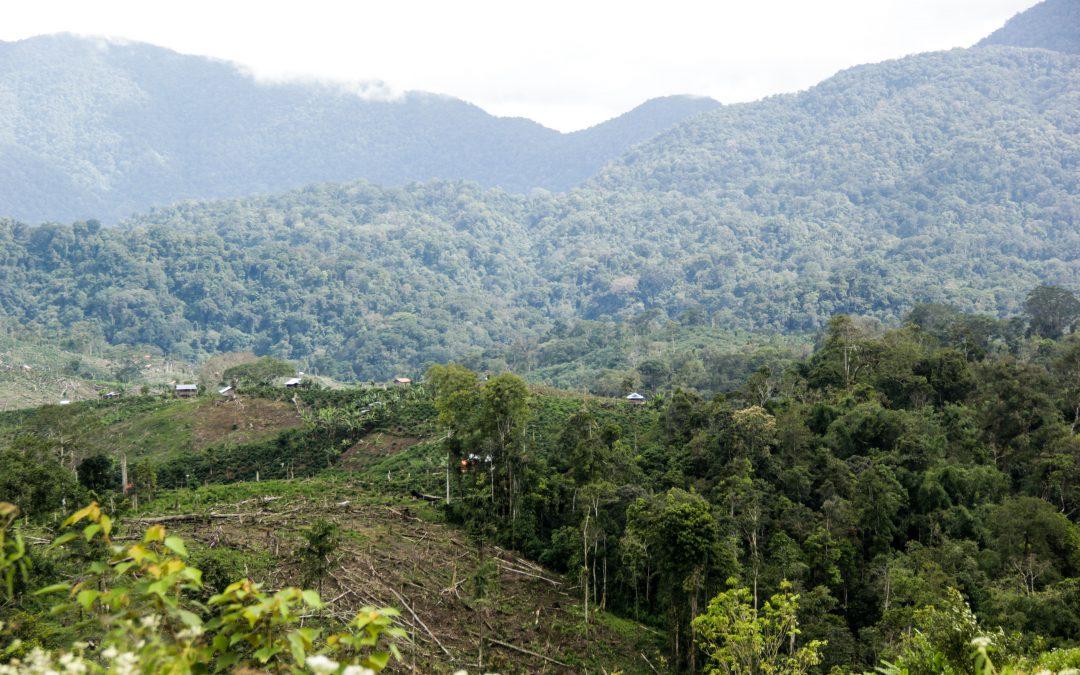 17 Desa Usulkan Dana Afirmatif
