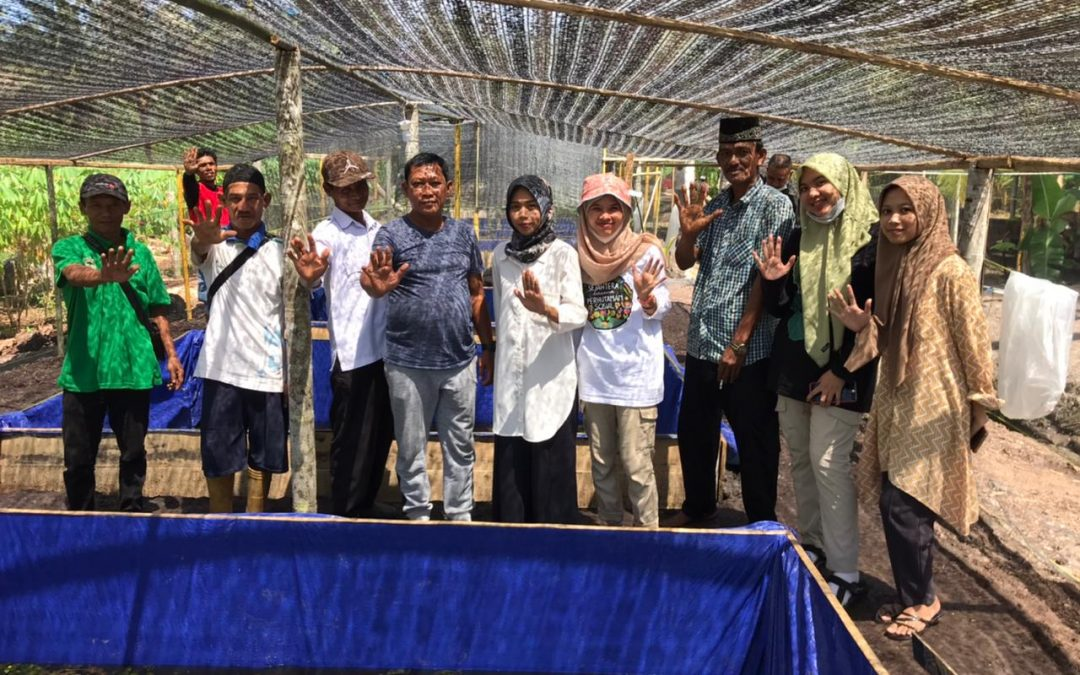 Bibit Ikan Perhutanan Sosial di Sungai Beras